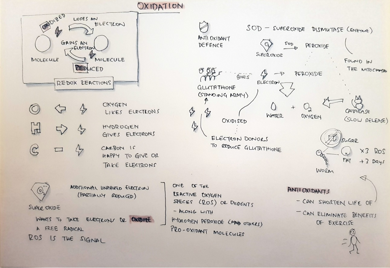 Sketchnotes of the Oxidation introduction from Fire in a bottle site